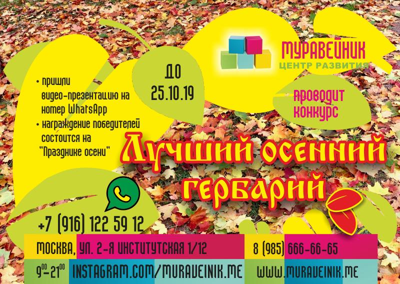 Конкурс на лучший осенний гербарий — Новости —